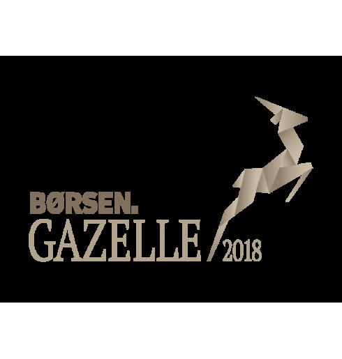 Nyhet: Globaltools kårad till gasellverksamhet 2018