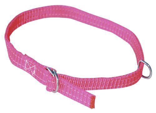 Køb Fårehalsbånd 20mm 60cm röd