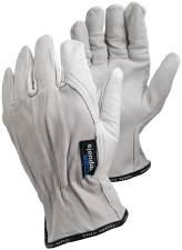 Läderhandske 640